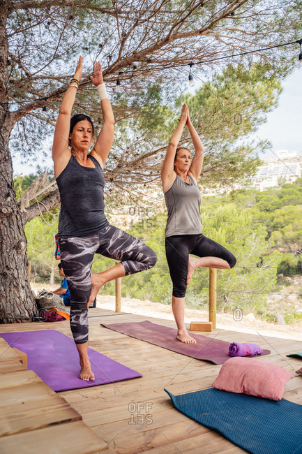 Full body women in sportswear standing on mats doing Tree pose practicing yoga on wooden platform surrounded by trees and plants on nature in daylight