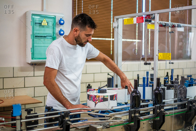 Side view professional winemaker wearing white shirt working in contemporary factory and collecting bottles from automatic conveyor belt
