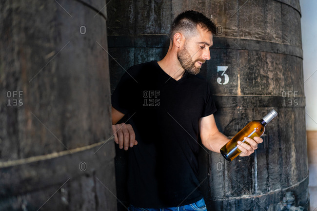 Side view positive male winemaker in casual clothes standing on ladder against big wooden barrel and checking label on white wine bottle