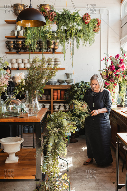 Professional adult female florist choosing green decorative plants for composition while working with colleague in cozy floristry studio
