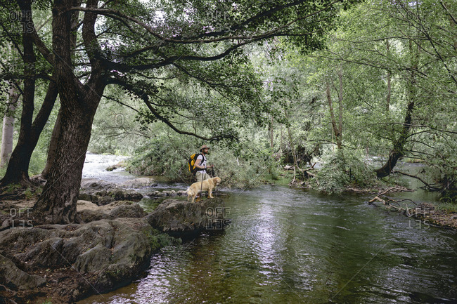 landscape of a young man in a hat and yellow backpack hiking with his dog over a lake of water and many green-leafed trees