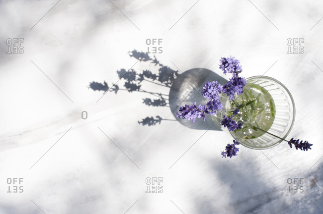 From above of delicate bouquet of lavender flowers in glass vase placed on table on sunny day