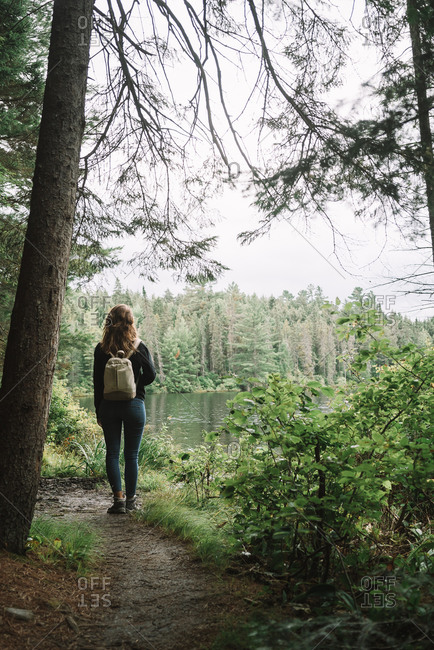 Back view of unrecognizable female hiker with backpack walking on narrow trail among green bushes and trees in Algonquin Provincial Park in Canada