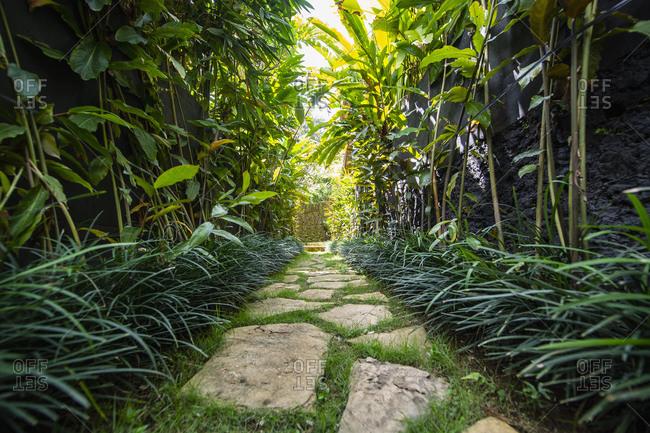 Walking path in garden at resort, Ubud, Bali, Indonesia