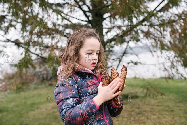 Girl admiring collection of brown pine cones, Kingston, Ontario, Canada