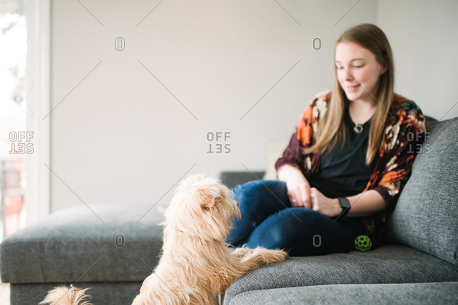 Woman watching dog from sofa