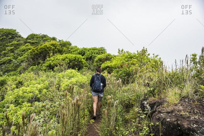 Hiker on Sleeping Giant Trail, Kauai, Hawaii