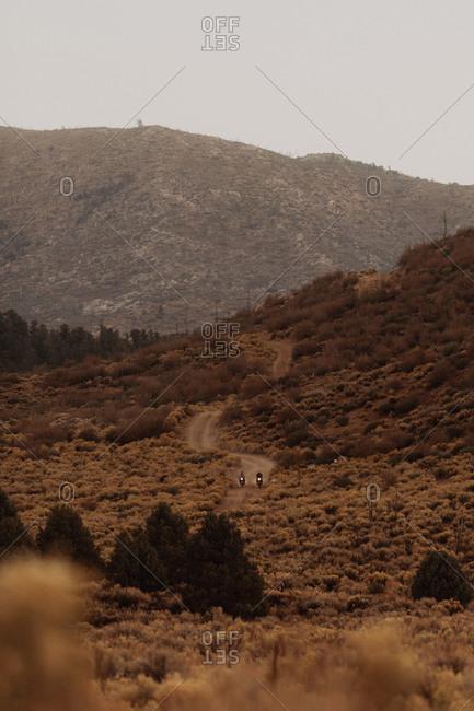 Motorbike riding through landscape of Kennedy Meadows, California, US