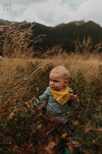 Baby exploring wilderness, Queenstown, Canterbury, New Zealand