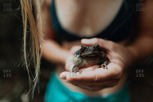 Woman holding frog in hands, Princeville, Hawaii, US