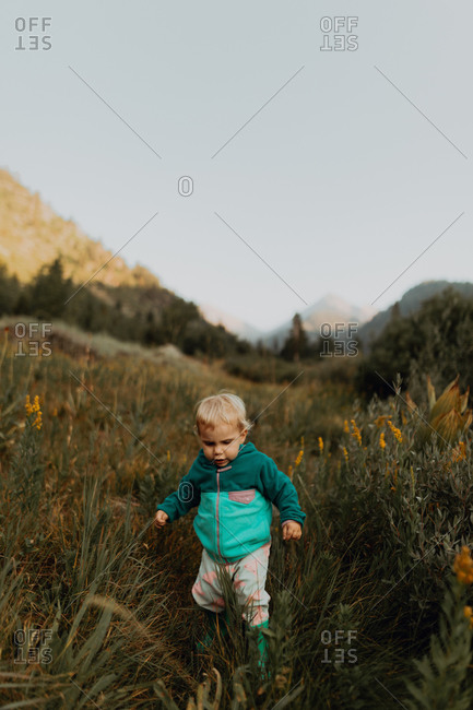 Female toddler toddling amongst long grasses in rural valley, Mineral King, California, USA