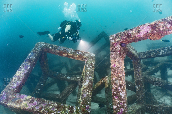 Scuba diver inspecting concrete structures placed in ocean to create living space for marine life