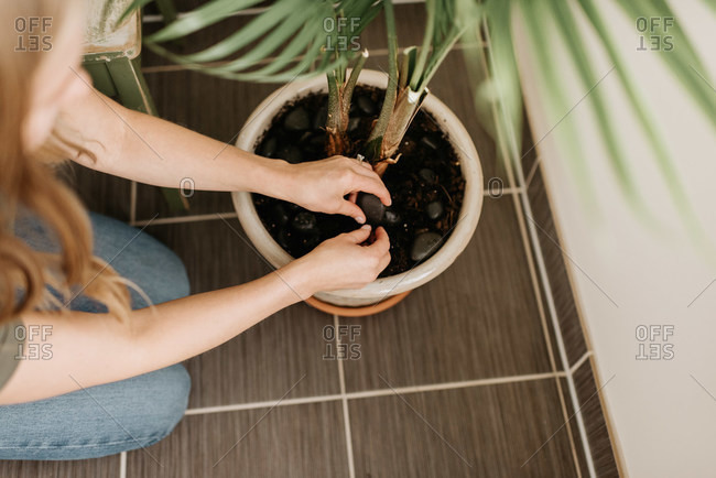 Woman tending to soil in potted house plant