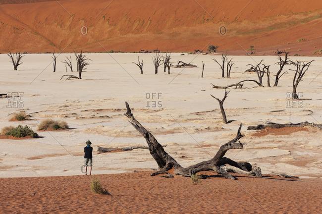 Traveler looking out at dead trees, Deadvlei, Sossusvlei, Namib Naukluft Park, Namib Desert, Namibia