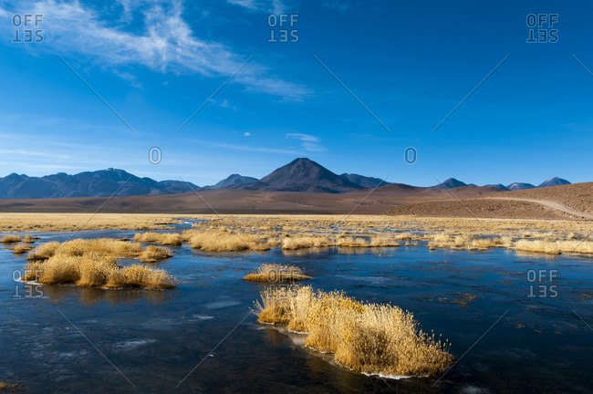Vado Rio Putana and Putana Volcano, water and reed islands in a river, and view of mountains, Atacama Desert, Chile