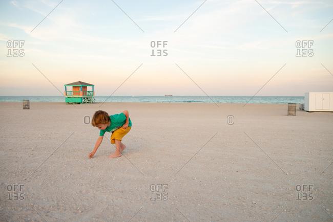 Toddler picking seashells on beach, Miami beach front, Florida, USA