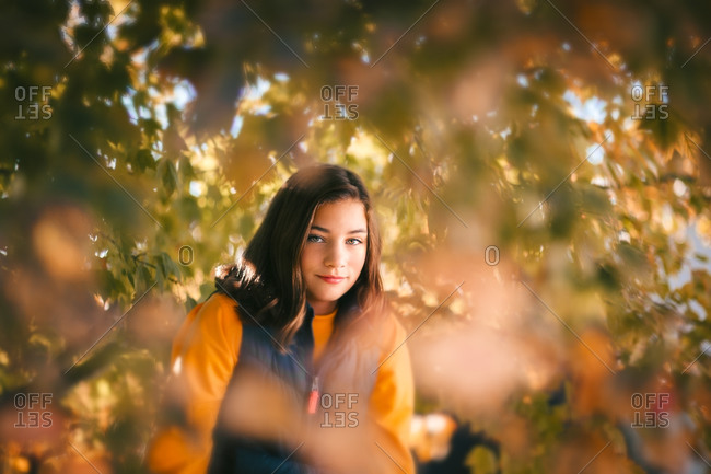Girl hiding behind autumn leaves in the branches of a maple tree.