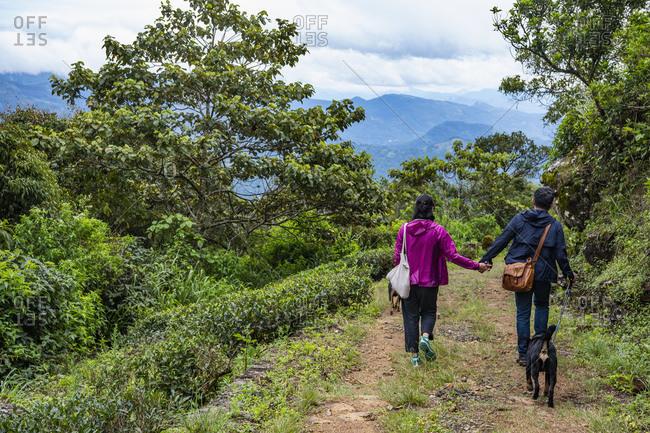 Couple hiking in highlands, Madulkelle, Sri Lanka