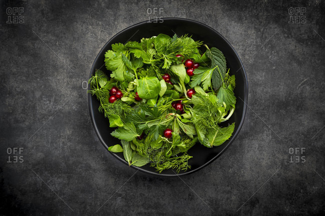 Oriental herb salad (mint- parsley- dill- coriander- lambs lettuce) with currants and pomegranate dressing