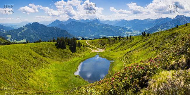 Germany- Bavaria- Oberallgau- Wertacher Hornle- Blooming Alpen rose (Rhododendron ferrugineum) and Hornle lake in Allgau Alps landscape