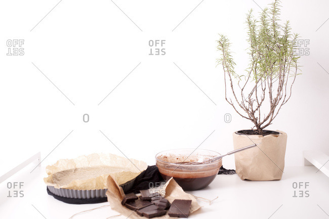 Ingredients for homemade brownies with roasted hazelnuts and melted chocolate by potted plant