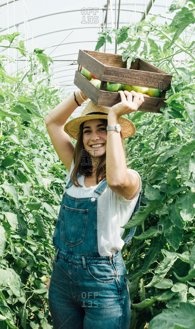 Positive female horticulturist in straw hat and denim overalls carrying wooden box with various tomatoes while standing between lush green tomato trees and looking at camera in hothouse