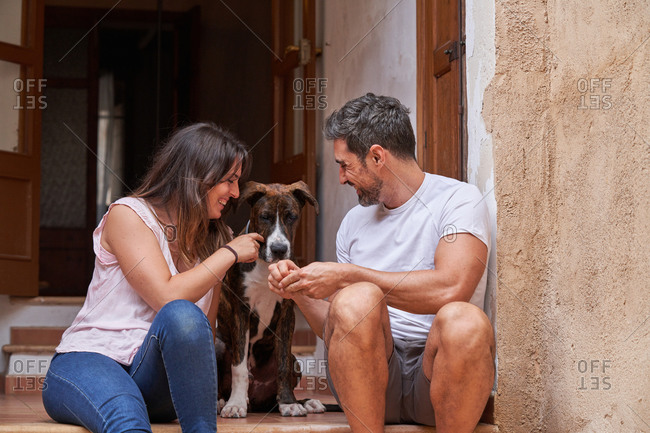 Boyfriend and girlfriend sitting on stone steps on street with cute Catahoula Dog while enjoying stroll at weekend