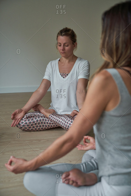 Group of flexible women in sportswear sitting on floor in Lotus pose meditating during yoga class