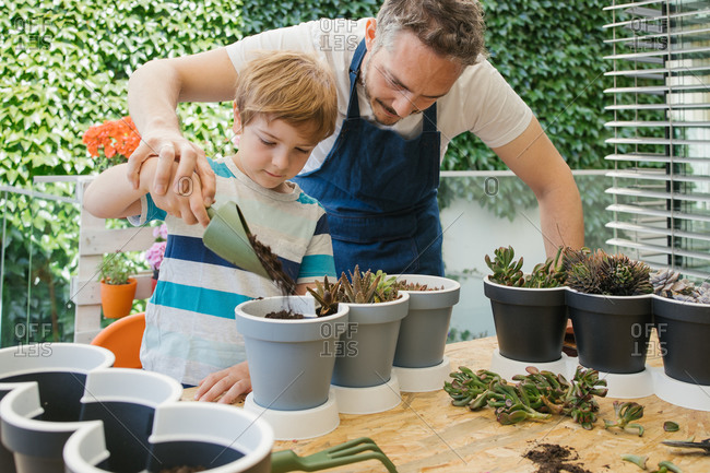 Crop cheerful man in apron and boy using gardening trowel while adding soil into pot with cacti seedlings standing near table behind lush green bushes