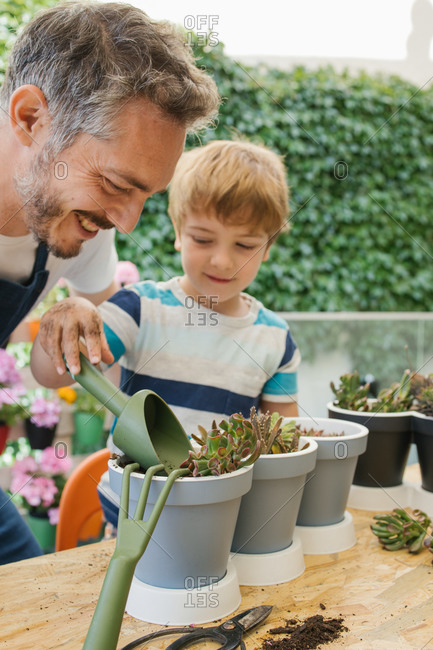 Cheerful man in apron and boy using gardening trowel while watering soil of potted plants cacti seedlings standing near table behind lush green bushes