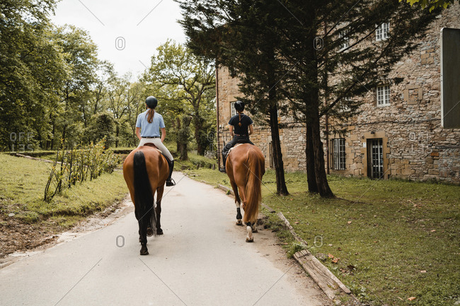 Back view of female equestrians sitting on chestnut horses and riding along paved path