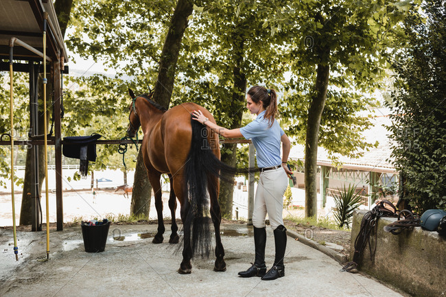 Side view of busy female rider standing near barn and grooming obedient horse with brush