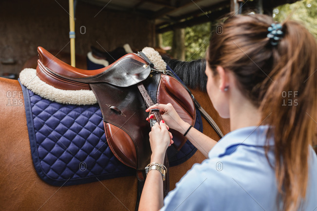 Back view of serious female equestrian putting saddle on chestnut horse before dressage