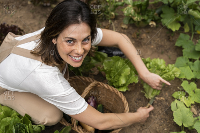 Smiling woman picking lettuce from vegetable garden in yard during curfew