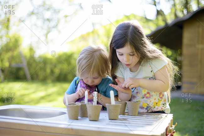 Cute girls planting seeds in small pots on table at yard