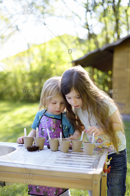 Cute sisters planting seeds in small pots on table at yard