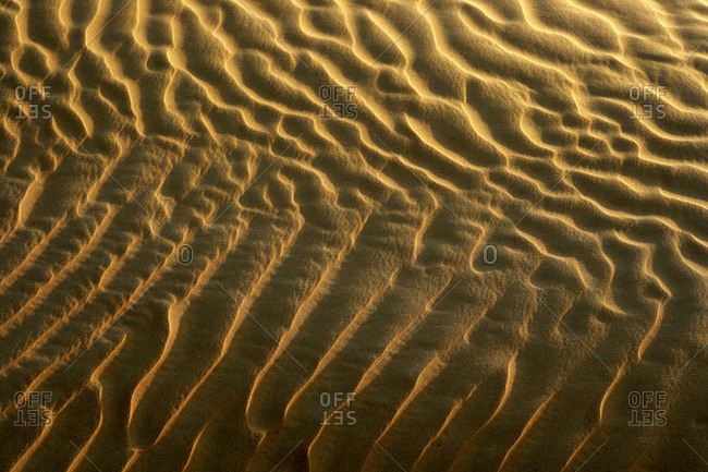 United Arab Emirates- Emirate of Abu Dhabi- Rippled sand at Quarter desert