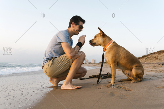 Man spending leisure time with his dog at beach