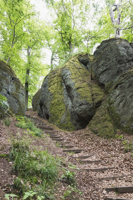 Steps amidst rock formations against trees in Thuringia forest- Germany
