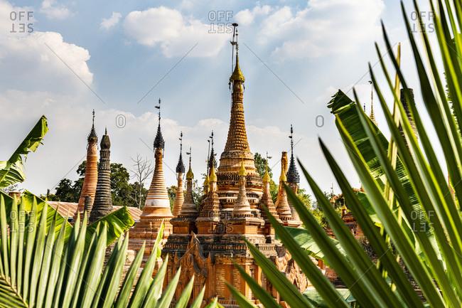 Myanmar- Shan State- Samkar- Palm tree leaves against Taw Mwe Khaung Pagoda