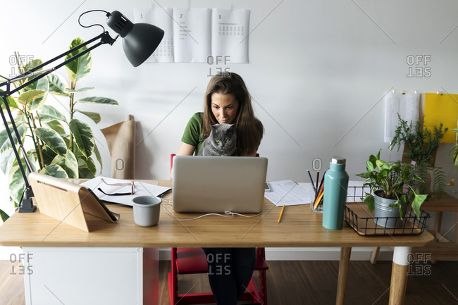 Businesswoman with cat using laptop on desk in home office