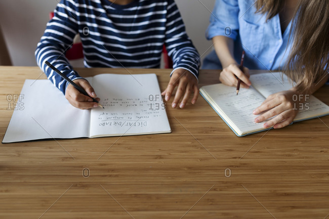 Female tutor with boy studying on table at home