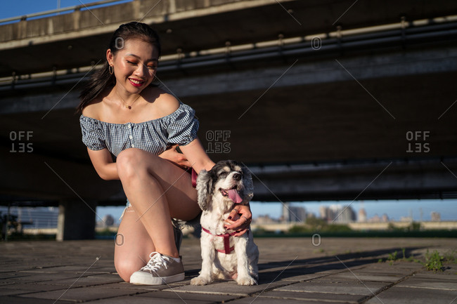 Cheerful young Asian lady in casual wear embracing gently American Cocker Spaniel while squatting on pavement near bridge under blue sky in town and looking away