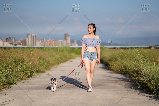 Cheerful slim Asian female in casual wear strolling with American Cocker Spaniel on pathway between green grass behind buildings under serene sky on sunny day