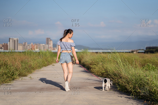 Back view of Asian female in casual wear strolling with American Cocker Spaniel on pathway between green grass behind buildings under serene sky on sunny day