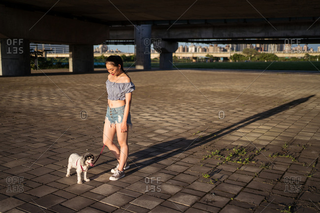 Fit positive Asian woman in casual clothes standing on pavement with small obedient purebred dog and looking away near bridge on sunny day in summer