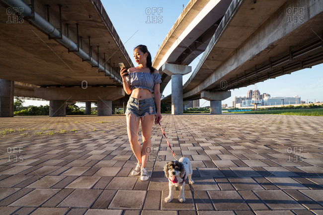 Fit positive Asian woman in casual clothes standing on pavement with small obedient purebred dog while using smartphone near bridge on sunny day in summer