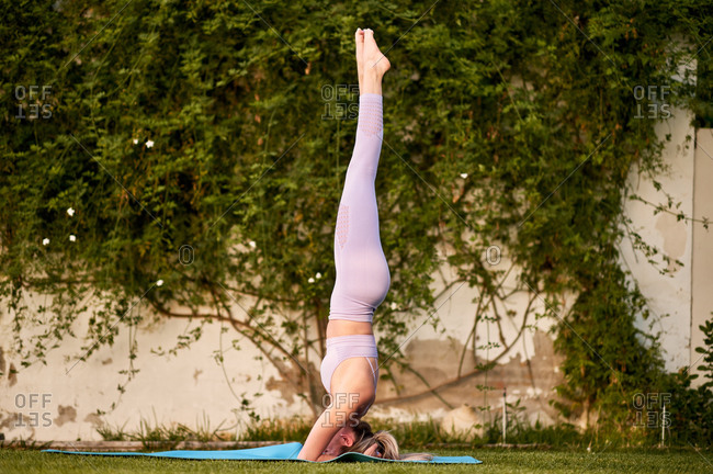 Side view of calm female in sportswear practicing yoga and performing headstand on lawn in park in summer