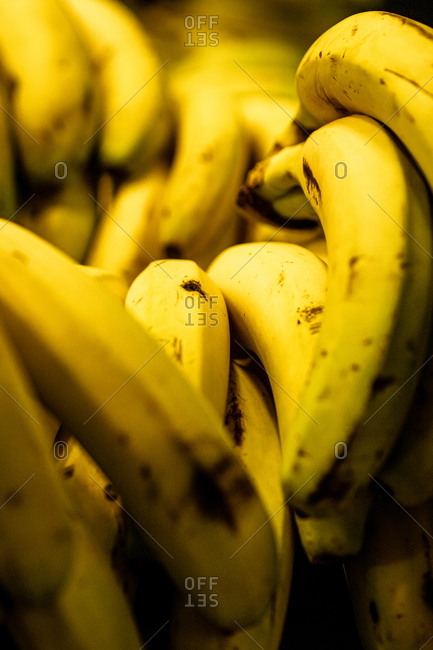 Closeup of fresh bunches of banana placed on counter in local grocery bazaar