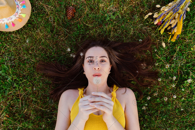 From above of carefree female lying on green grass on lawn and blowing fluffy dandelion flower while relaxing during weekend
